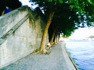 19598653 1924040327818966 6049601034583059168 n 300x225 - Picnic : Saint louis Island in paris