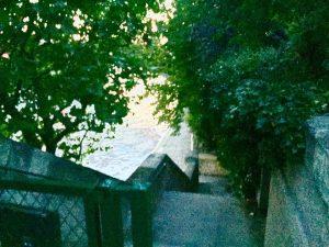 20031703 1924040347818964 2088736720739400092 n 300x225 - Picnic : Saint louis Island in paris