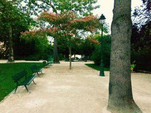 20106647 1924040411152291 7262946892186931459 n 300x225 - Picnic : Saint louis Island in paris